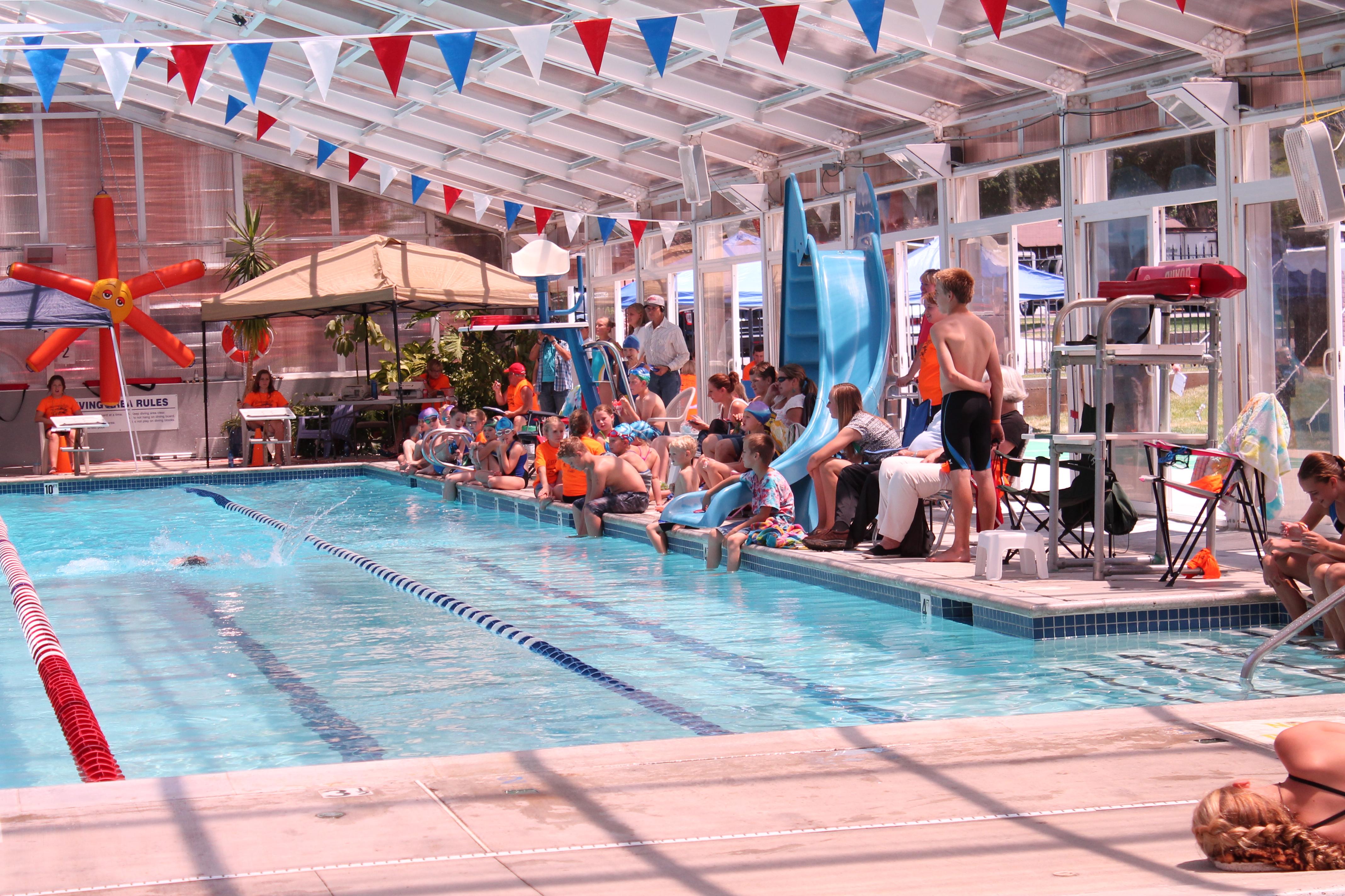 Swim Fest 2014